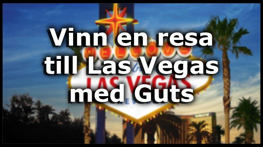 Resa till Vegas Ninja 64082