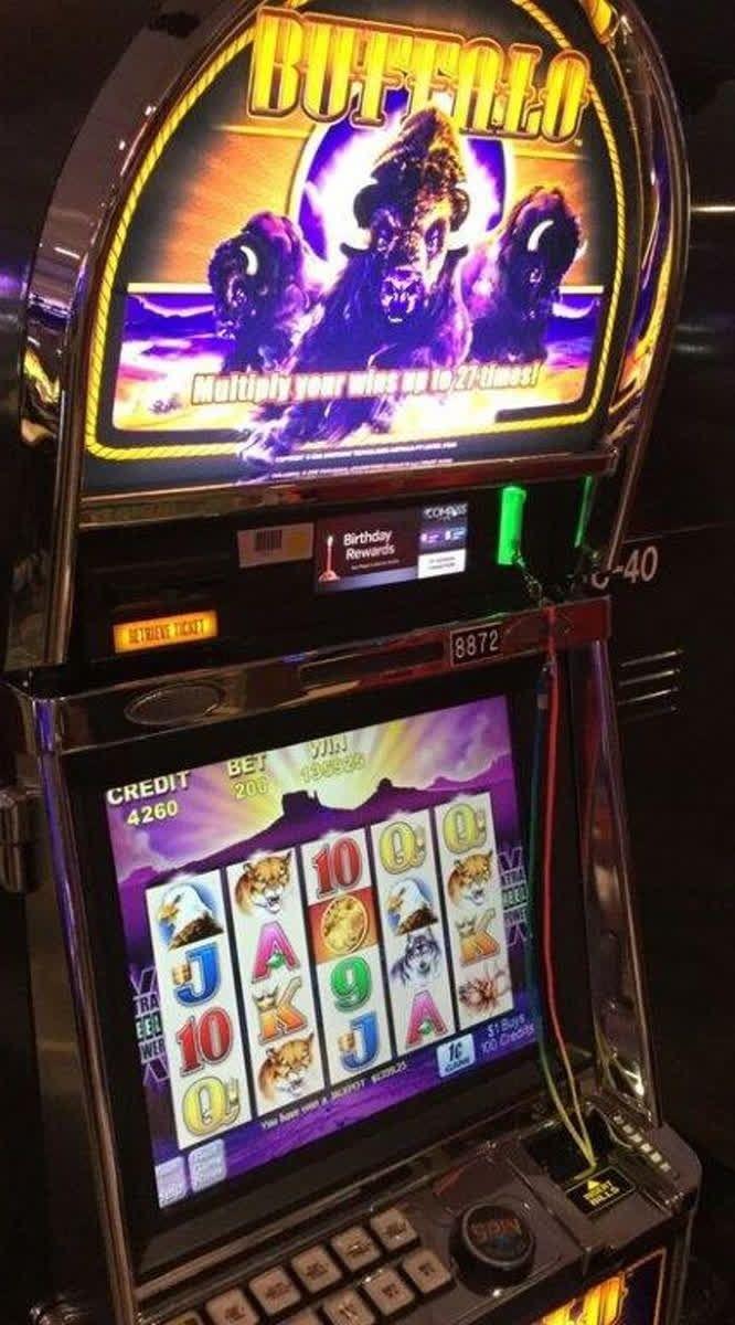 Vinn lyxkryssning casino cruise betalsätt