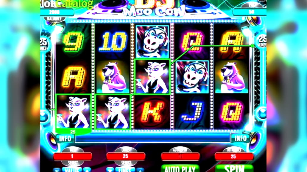 Online casino no 25242